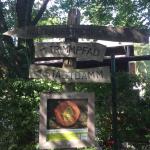 Trimmdichpfad Mooswald