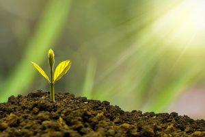 Wachstum, Stabilität Und Erfolg - Bei Ihren Gewerbeimmobilien Und Immobilienfonds